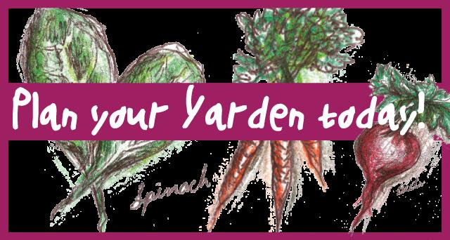 yarden_web