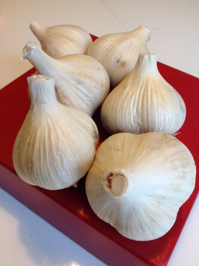 Garlic_Bulbs