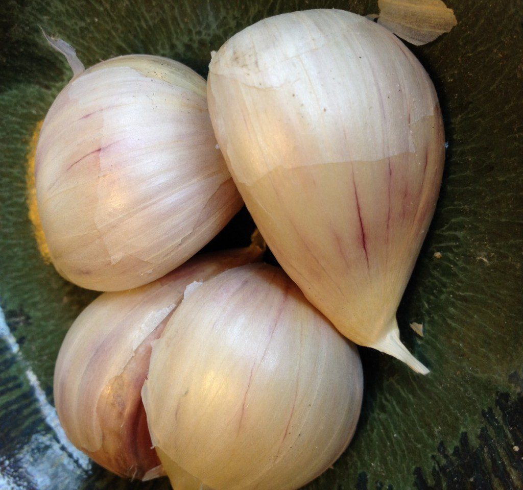 Garlic_ClovesDish