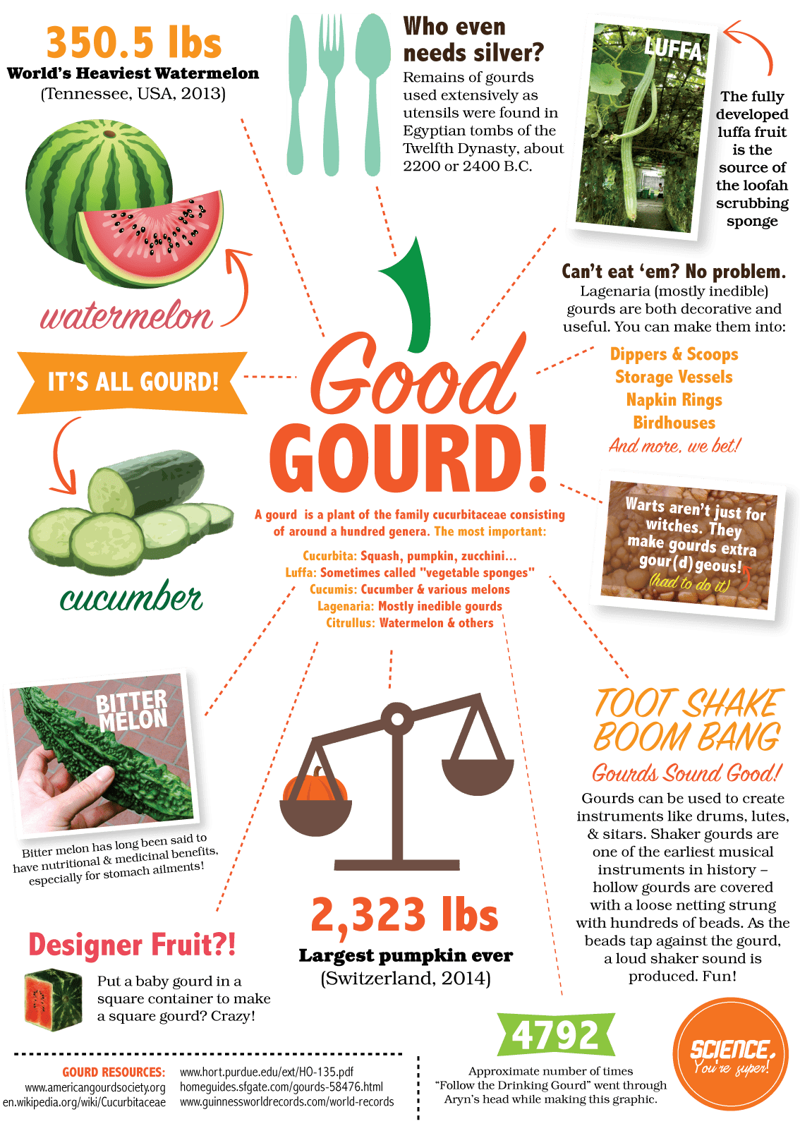 Gourds_Fall15_forweb