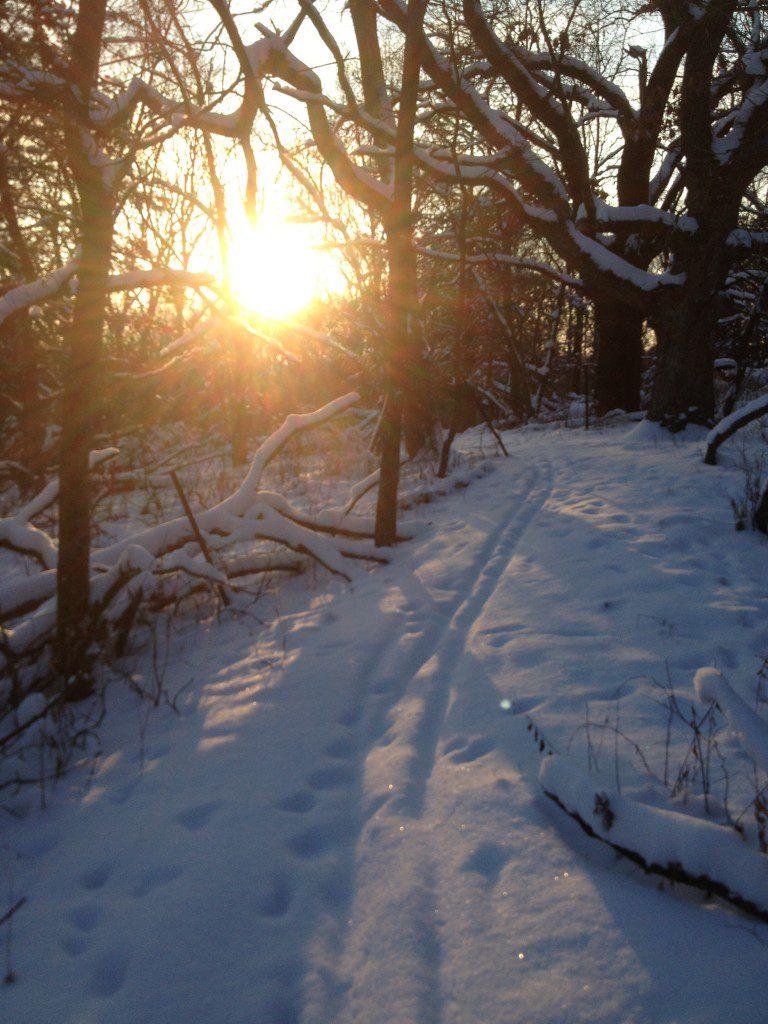 Ski_Sun